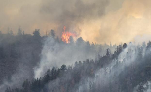 Военни гасят горския пожар в Хасковско
