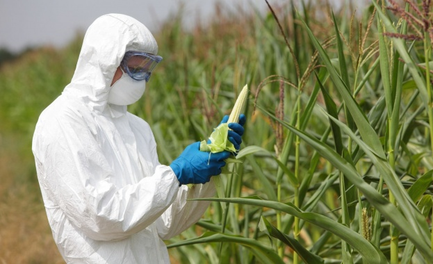 Един от най-големите разработчици на ГМО и инсектициди в света