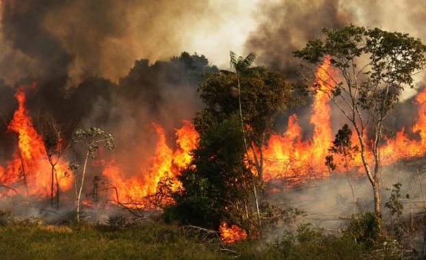 Бразилският президент Жаир Балсонаро изпрати армията да помага в за