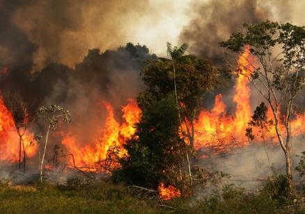 Армията се включи в потушаване на пожарите в Амазония