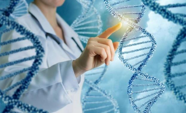 Учени от Датския технологичен институт идентифицираха неизследван механизъм на епигенетичната