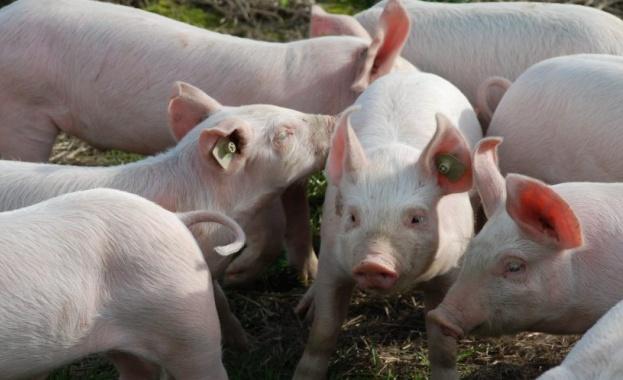 МС отпуска 28 милиона лева към Министерството на земеделието за
