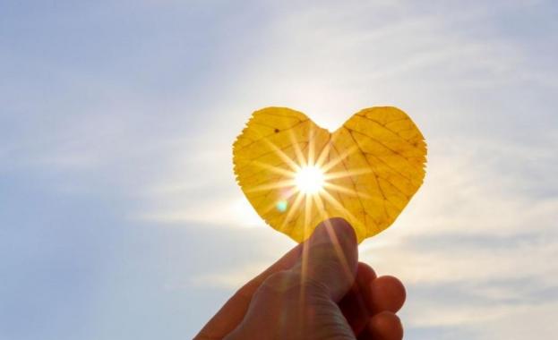 Снимка: Учени създадоха материал, който се самоунищожава на дневна светлина