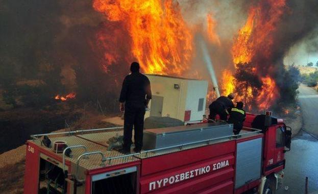 Голям пожар обхвана гръцкия остров Закинтос. Евакуираха 120 туристи от