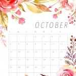 Предстоящи събития в страната на 12 октомври