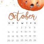 Предстоящи събития в страната за 16 октомври