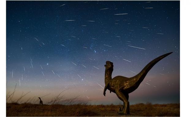 Изясниха как бозайниците са излезли от сянката на динозаврите