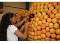 Фестивал на цитрусовите плодове събира творци от 27 държави в Турция