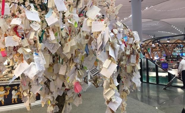 Дърво на желанията оживява на истанбулското летище (Снимки)