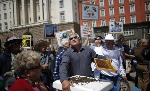 """Сдружение """"Български Свободни Пчелари"""" организира днес протестно шествие срещу употребата"""