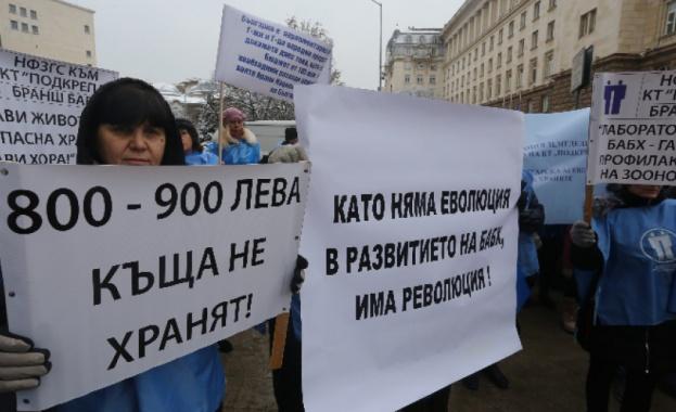 Работещите в Българска агенция по безопасност на храните (БАБХ) излязоха