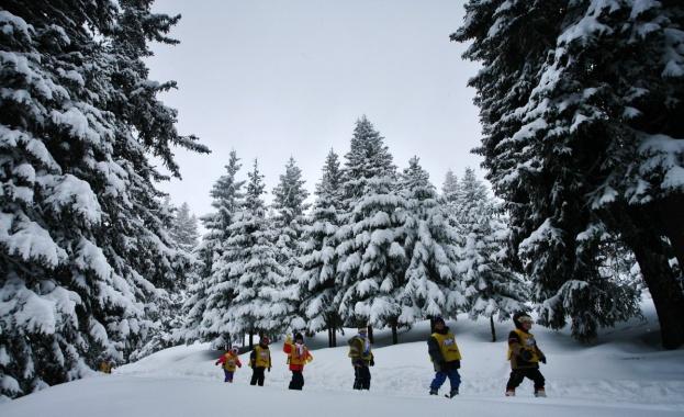 Зимният сезон започна, местата за настаняване, заведенията за хранене, бизнесът