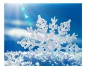 Опасностите от зима без сняг