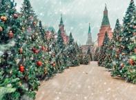 """Фестивал """"Пътешествие в Рождество"""""""