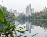 Защо заразата тръгна от Ухан - градът на небостъргачите и светулките ?