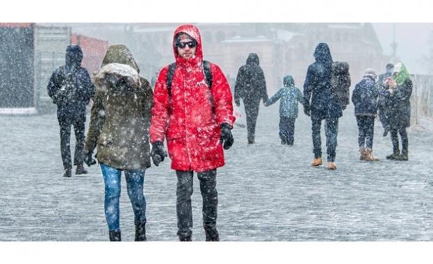 Рядък за тази зима гост посети в четвъртък и вчера