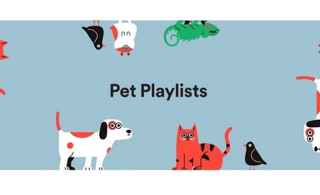 Spotify изненада мнозина свои потребители, след като от миналата седмица
