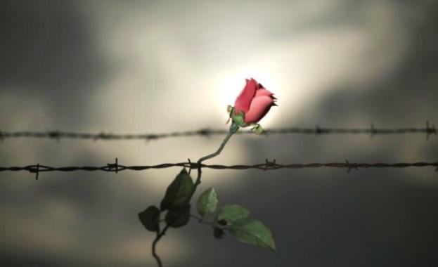 Международният ден за възпоменание на жертвите на Холокоста се отбелязва