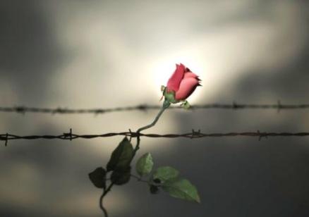 Светът отбелязва Международният ден за жертвите на Холокоста