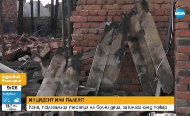 Пожар изпепели конюшня във Врачанско, загинаха 11 елитни коне, участвали