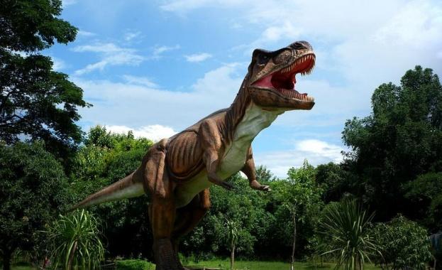 Новооткрит динозавърски фосил навежда на мисълта, че необичайни месоядни динозаври,