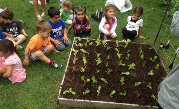 Вкарват зеленчукова и билкова градина в детските градини и у