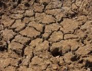 ООН и Великобритания ще председателстват климатична среща през декември