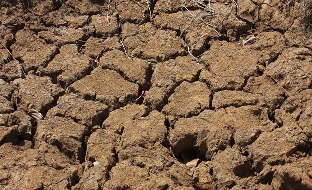 ООН и Великобритания ще председателстват глобална среща за климата на