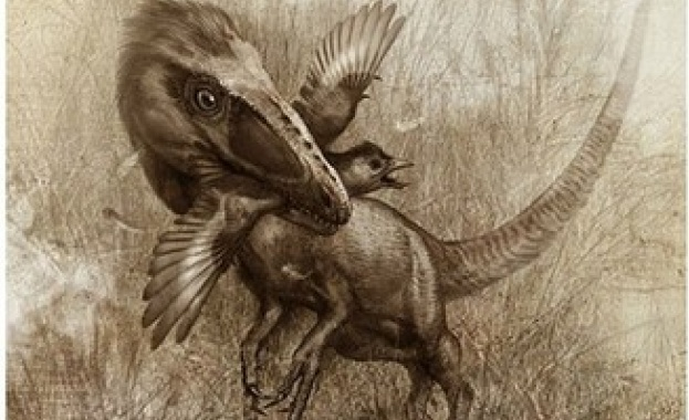 Специалисти се натъкнаха на фосили от летящи влечуги с остри