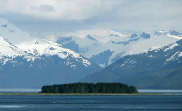 Популацията от бобри в Аляска и в други части на