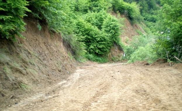 Югозападното държавно предприятие налива близо 13 млн. лв. в нови горски пътища