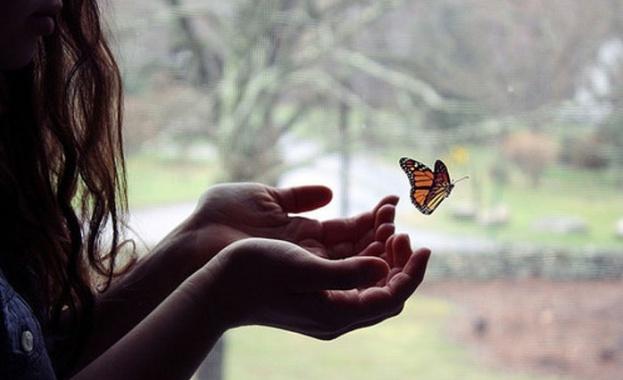 """""""Щастието е като пеперуда. Колкото повече го гоните, толкова повече"""