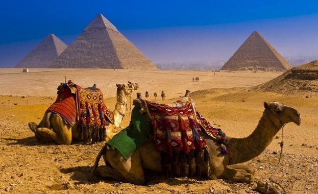 Египетските музеи и прочутите пирамиди в Гиза са отворени отново
