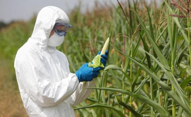 Monsanto плащали на Google, за да потулят критики