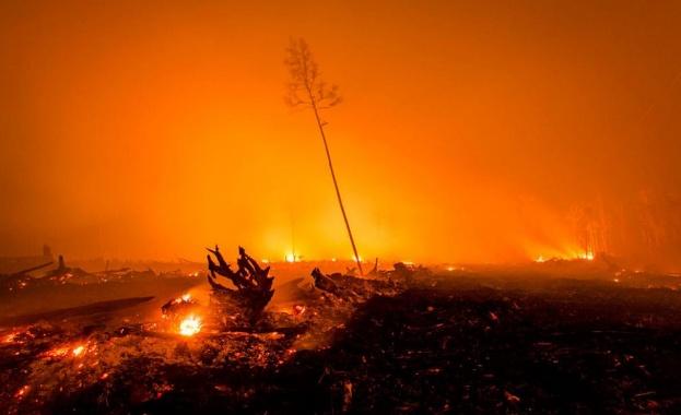Огнен ад и в Индонезия: Над 8000 души се борят с горски пожари