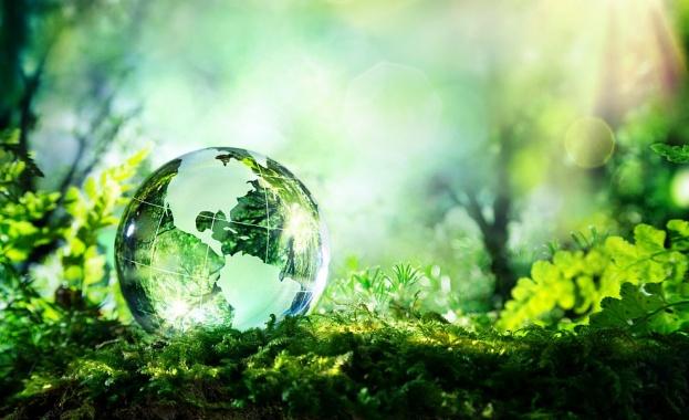 Фауната и флората в света са застрашени