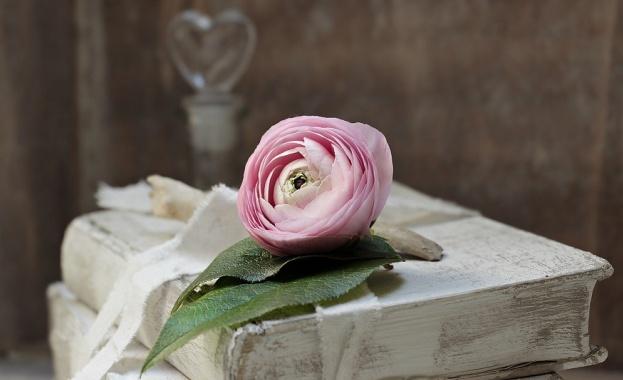 Библиотеката в Смолян посреща читатели с любовни романи