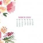 Предстоящи събития в страната за 28 март