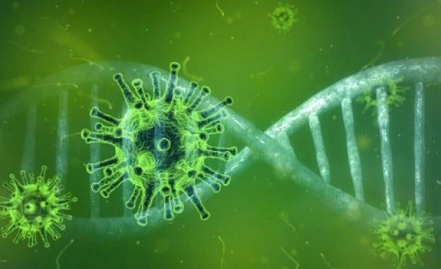 Пробив при създаването на ваксина срещу коронавируса