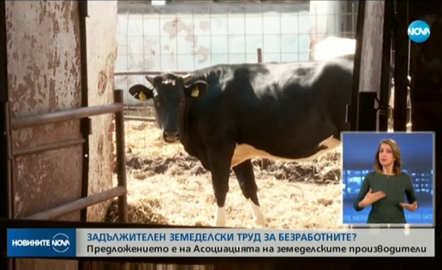 От Асоциацията на земеделските производители настояват всички безработни заради кризата