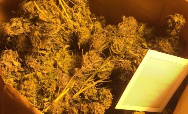Полицейската операция по противодействие на престъпления с наркотични вещества е