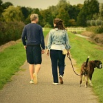 1/3 от закупените във Великобритания кучета в пандемията никога не са били на разходка