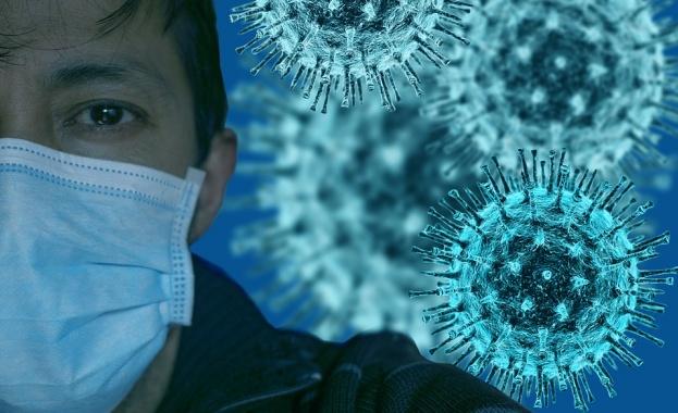 Лекари от цял свят: Пандемията от дезинформация е по-страшна от COVID-19