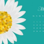 Предстоящи събития в страната за 14 май