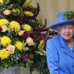 Продават самолетите на кралица Елизабет II