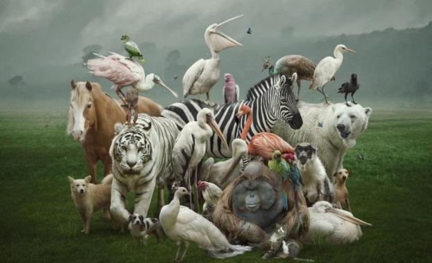 На 22 май отбелязваме Международнния ден на биологичното разнообразие. Денят