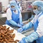 Хиляди източноевропейци мизерстват, за да има евтино месо в Германия
