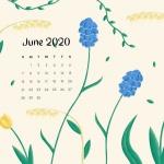Предстоящи събития в страната за 3 юни
