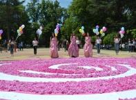 72 000 рози – в една за празника на Казанлък