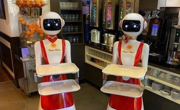Ресторант в Холандия започна да използва роботи вместо сервитьори, за